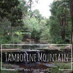 Mini Guide to Tamborine Mountain (with and without kids)