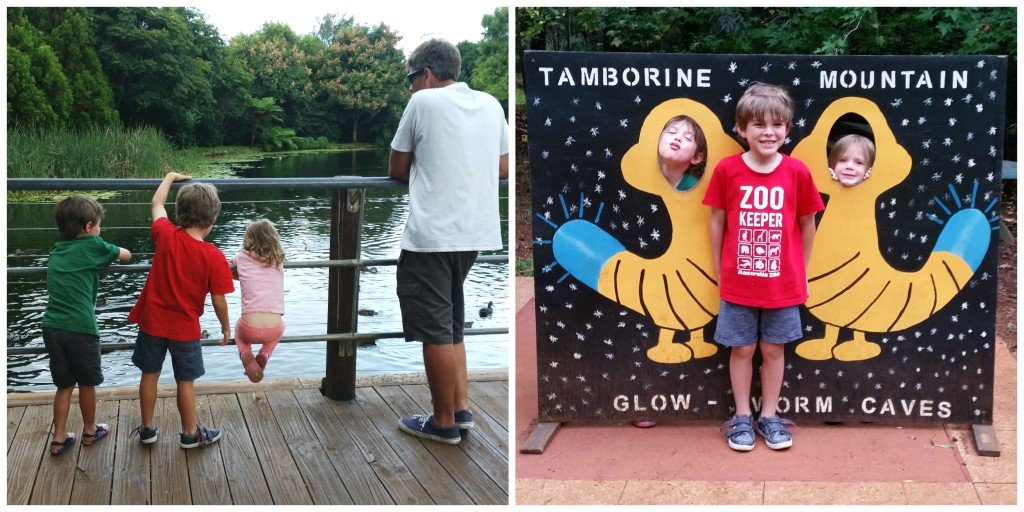 Collage of family pics at Glow Worm Caves Tamborine Mountain