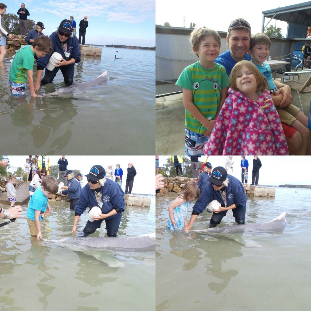 Kids at the Barnacles Dolphin Centre from Rainbow Beach holiday